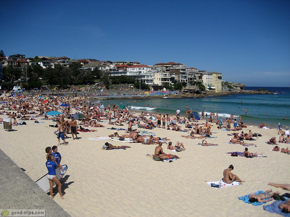 Australian Beaches With People Bondi Beach People at Bondi