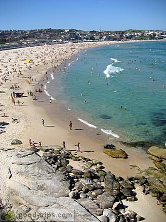 Y Electric Bondi Beach bondi beach sandy library - 必应 Bing Images 图片搜索结果