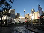 New South Wales - Sydney - Sydney Tower from Darling Harbour