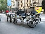 Melbourne - Carriage near Melbourne Town Hall