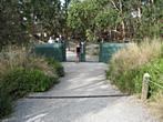 Koala Conservation Centre - Entrance to the boardwalk