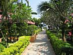 Koh Samui - Chaweng Beach - Seascape Beach Resort - Way to the Seascape Beach Resort beach